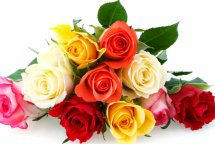 Bouquet of 10 assorted roses