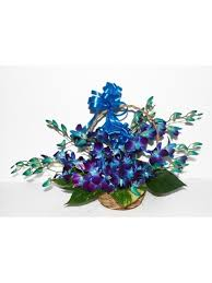 10 Blue Orchids in Basket