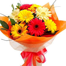 Bouquet of 8 coloured gerberas