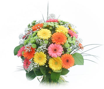 Image hotlink - 'http://www.allindiaflowers.com/Images/bouquet03.jpg'