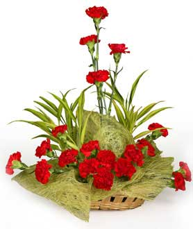 Arrangement of Red Carnations