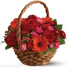 Red Flowers in a Basket