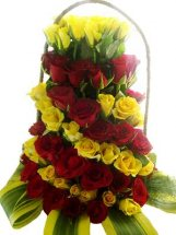 80 red and yellow roses in spiral