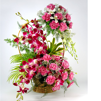 4 Purple orchids at base and 20 pink carnations in double Tier Hanging from handle of basket