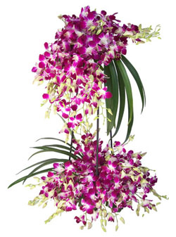 20 Purple Orchids on a stand