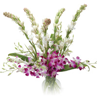 6 Tuberoses and 6 purple orchids Bouquet