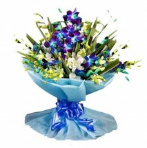 6 BLUE ORCHDS BOUQUET