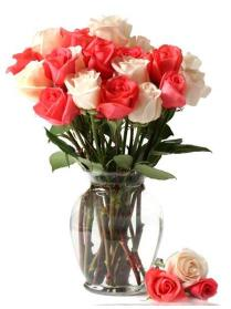 12 Pink and Red Roses in Vase