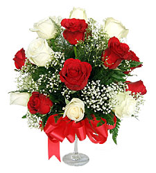12 Red and White Roses in a Vase