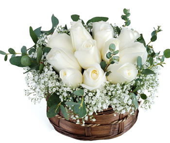 10 White roses basket