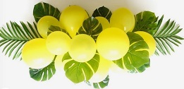 15 yellow balloons decorated with palm leaves