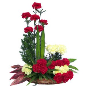 18 Red and Yellow carnations in a basket