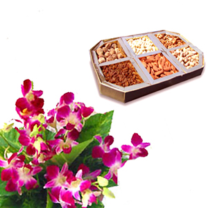 250 grams Dryfruits and 4 orchids