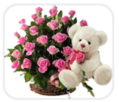Teddy Bear 6 inches 12 pink roses in the same basket