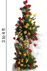 3 to 4 Feet 100 Mix Roses