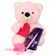 12 Inches Pink Teddy with 2 Silk Chocolates