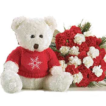 White Teddy with 24 Red and white carnations